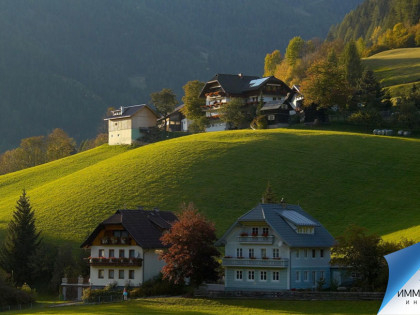 Повседневная жизнь австрийцев