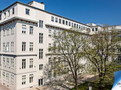 Венский медицинский университет: условия поступления, обучения, практики