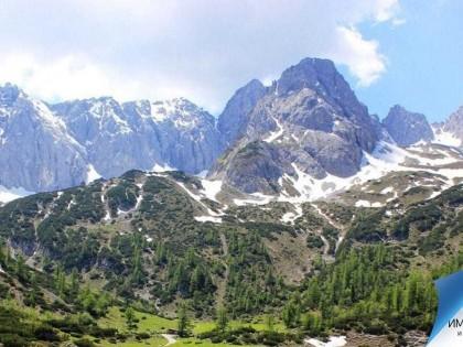 ВНЖ в Австрии по воссоединению семьи: пошаговая инструкция
